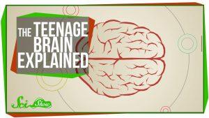 SciShow - The Teenage Brain Explained